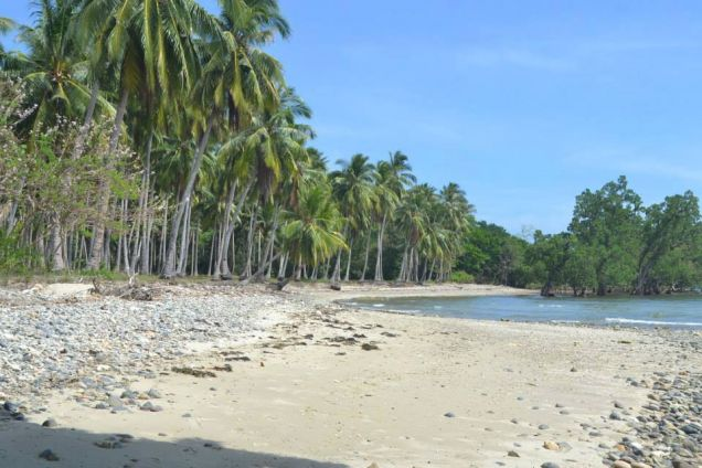 Beach Lot For Sale in Puerto Princesa, Palawan - 0