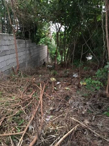 1000 Sq.m Lot for Sale in Boracay Island - 1