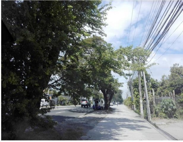 Commercial lot for sale along Mc. Arthur Hi-way in San Fernando - 4