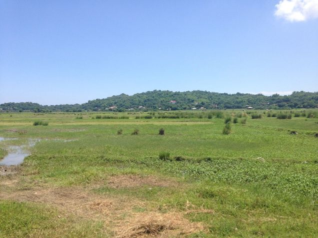 1.3 Hec lot For Sale, Biday, San Fernando City, La Union - 7