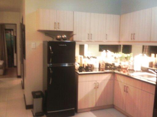 56sqm 2 Bedroom Condo in Pasay City nr Airport. DMCI Fairway Terraces - 5