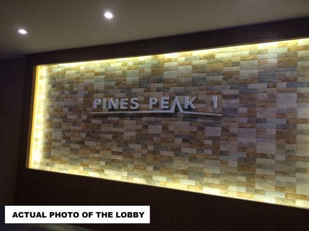 Pines Peak Condo near EDSA Boni 1 Bedroom de-luxe RFO Limited Promo on terms and Bank loan - 3