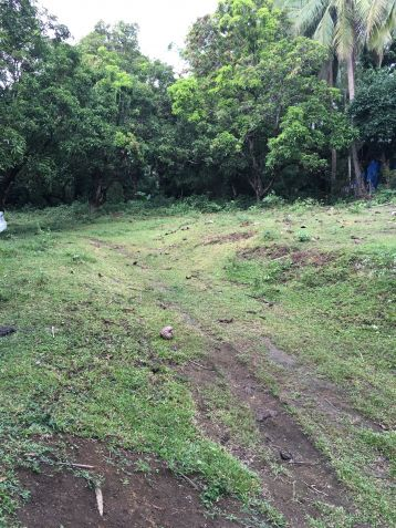Farm Lot for Sale, 24416 sqm in Batangas City, Engr. Ednel Peter A. Madriaga - 6