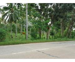 Commercial Lot  Along  City  Road Of Island Garden City Of Samal - 1