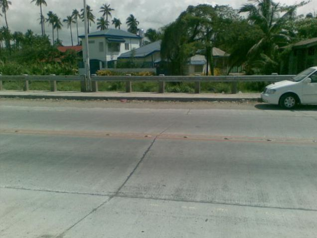 Commercial Lot for Sale, 495sqm Lot in Cagayan de Oro, Along Kauswagan-Puntod Bridge, Cedric Pelaez Arce - 3