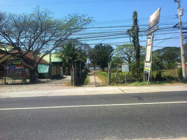 1.2 Hec Beach lot for sale in Paringao Bauang La Union - 3