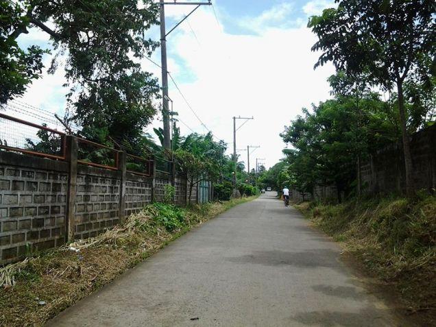 Farm lot with improvement in near Tagaytay city - 6