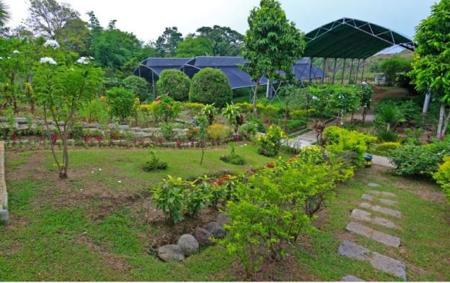 Lot For Sale in Tanza, Cavite - 0