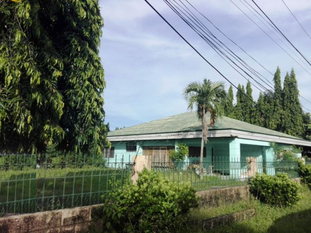 Bungalow House & Lot For Rent In ,Angeles City Near Nepo Mall - 0