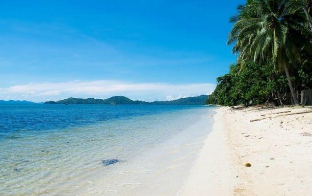 El Nido Palawan White Sand Beach Front Lot - 0