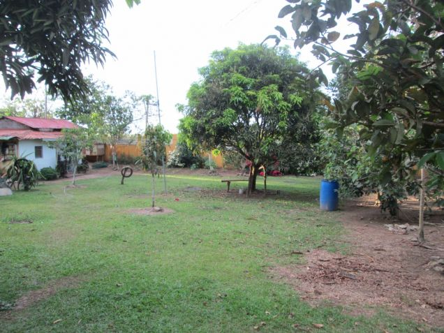 5000 sqm farm lot with rest house near Tagaytay at P15M - 8
