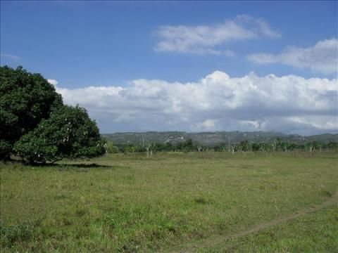 Vacant Lot For Sale by Owner in Cebu - 0