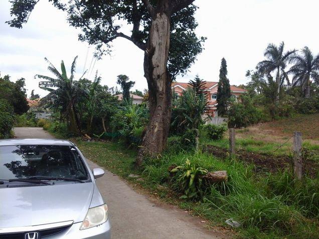 Tagaytay city Residential farmlot in Tagaytay near very near highway - 0