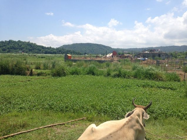 1.3 Hec lot For Sale, Biday, San Fernando City, La Union - 3