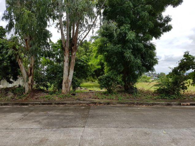 Vacant Lot in Stonecrest San Pedro Laguna for Sale - 0