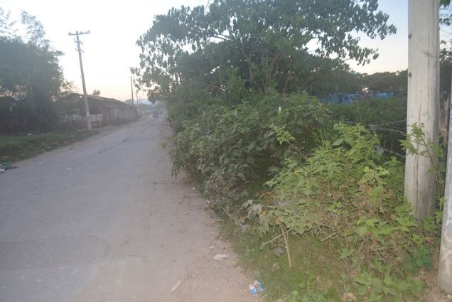 Lapu Lapu 2000sqm lot along the road of soong P16Mn - 2