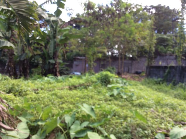 Lot Only at Doña Carmen - 2