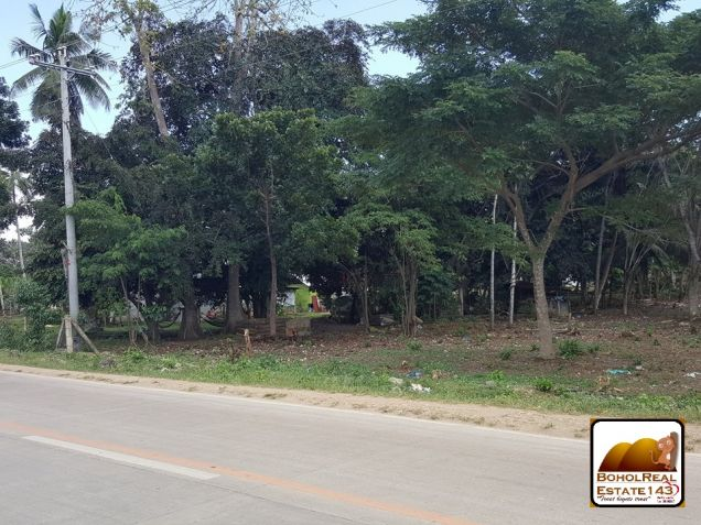 Panglao Island Comm'l Lot for Sale along highway - 2