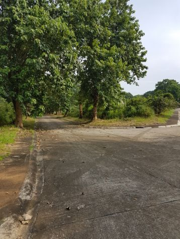Lot for sale in Village East, Binangonan, Rizal - 5