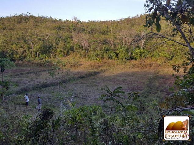 CHEAP Farmlot in Baclayon, Bohol - 3 hec at P150 per sqm - 9