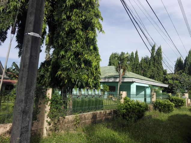 3BR with Huge yard for rent located in Angeles City - P26K - 4