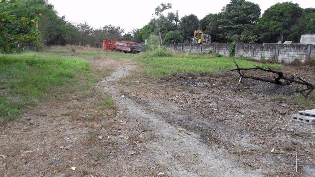 2999Sqm Lot for Lease in Telabastagan San Fernando,Pampanga - 5