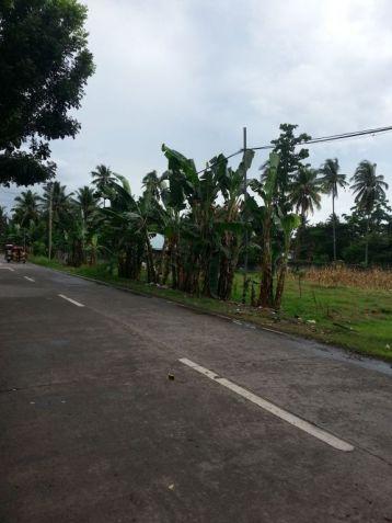 Farm Lot for Sale, 4188sqm Lot in Balingasag, Brgy. Cogon, Municipality of Balingasag, Cedric Pelaez Arce - 0