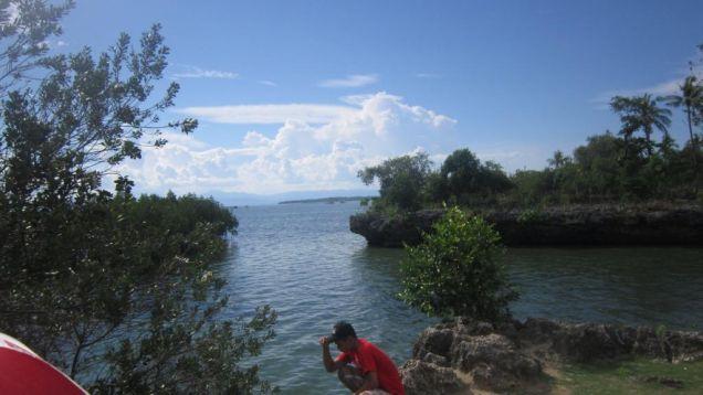 Beach Lot in Badian, Cebu for Sale 39,373 sq.m. - 8