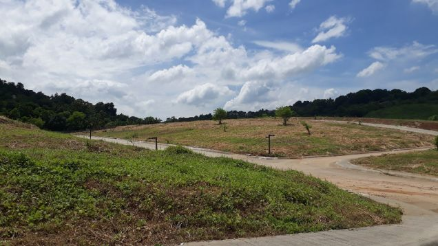 216 sqm Residential Lot for Sale in Amarilyo Crest Havila Taytay Rizal - 4