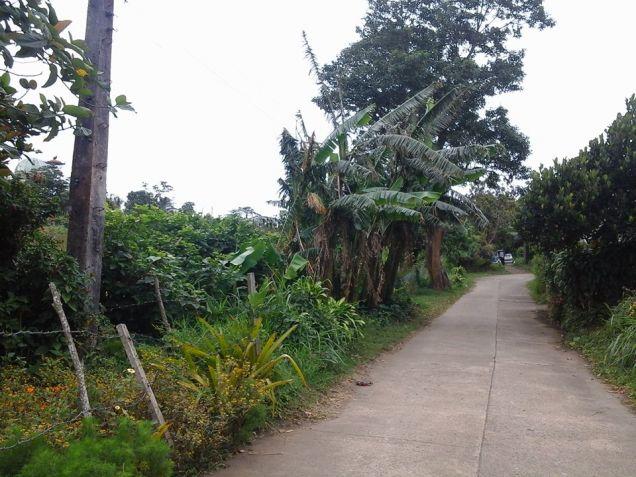 Tagaytay city Residential farmlot in Tagaytay near very near highway - 2