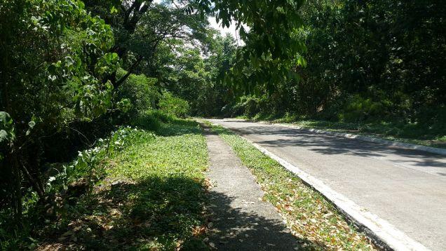 772 sqm Farm Lot for sale Havila Angono Rizal near Antipolo and Marikina City - 8