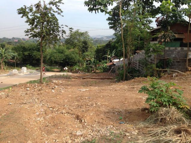 Valley View Executive Phase 2B Residential Lot for sale near Ortigas Extn Cainta, Rizal - 5