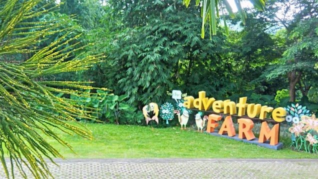 Lot for sale in the Glades Timberland Heights San Mateo Rizal near Quezon City - 9