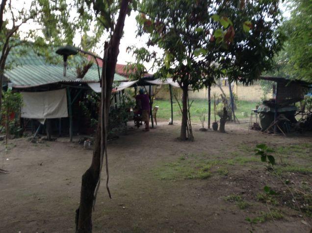Dau Mabalacat Pampanga Vacant Lots for Sale 720 Sq mtrs. - 3