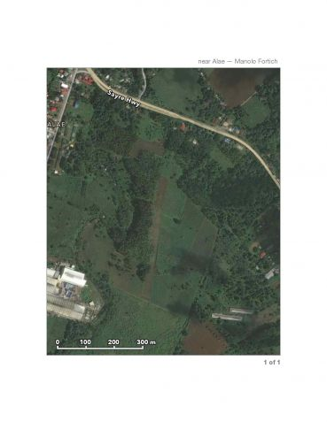 12-hectares Bukidnon Manolo Fortich Alae Raw Land for Sale by Owner (T-126258) - 0