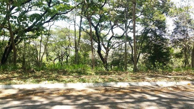 772 sqm Farm Lot for sale Havila Angono Rizal near Antipolo and Marikina City - 4