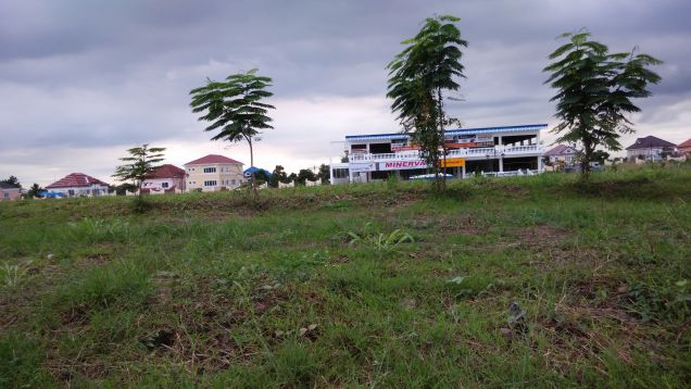 For Lease 1,574sqm Prime Commercial Lot located at Versailles - 2