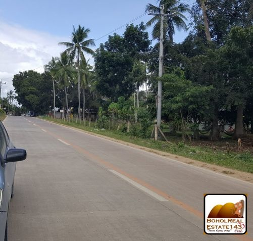 Panglao Island Comm'l Lot for Sale along highway - 4