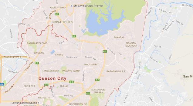 1450 sqm Lot Area, Lot for Sale in Quezon City, Metro Manila, Code: COJ-LOT - 1450BU - 0