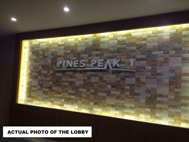 Condo in Mandaluyong near Ortigas 1Bedroom Term payment available RFO - 1
