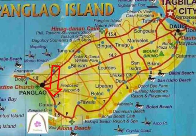 Affordable 1 hectare Danao, Panglao lot for Sale at 1,300 per sqm - 4