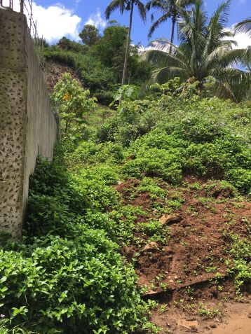 Farm Lot for Sale, 240000sqm Lot in Sampaloc, Engr. Ednel Peter A. Madriaga - 4