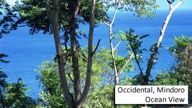 beach lot for sale, 1079sqm lot in mindoro - ocean view, occidental mindoro, rhi-2166, reality homes inc.