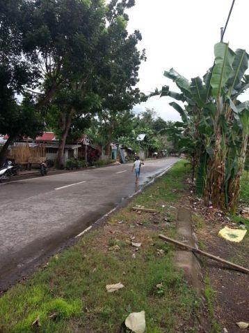 Farm Lot for Sale, 4188sqm Lot in Balingasag, Brgy. Cogon, Municipality of Balingasag, Cedric Pelaez Arce - 3