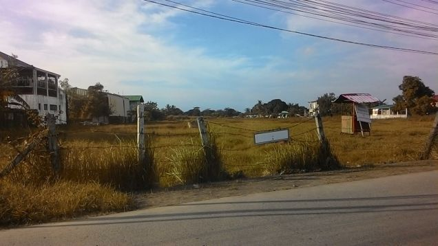 39478 sq.m. vacant lot for long term lease near PEZA Rosario Cavite - 5