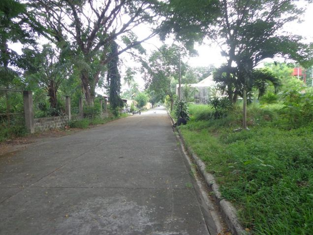 Foreclosed Residential Lot For Sale in Bata Bacolod City - 2