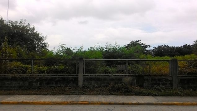 Industrial lot for rent or lease in Laguna - 3