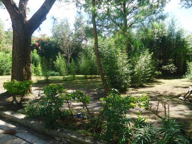 Lot for Sale in Baguio City - 5