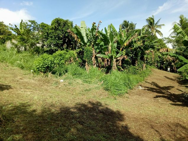 residential lot 100 sqm Near Adventist University of the Philippines - 9