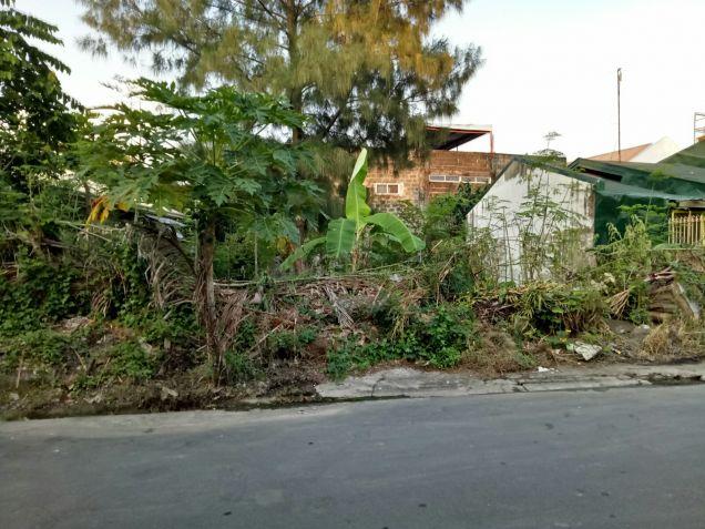 Vacant lot in Pillar Village - 2